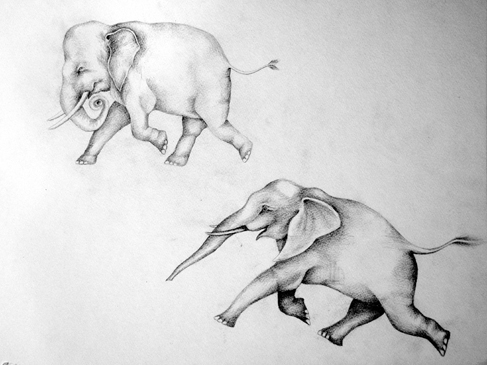 Josiane Keller - two grey elephants tattoo design