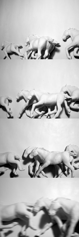 Josiane Keller - herd of horses running - test pics