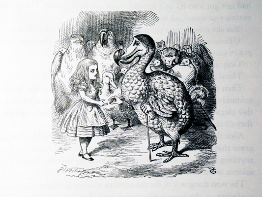 John Tenniel - Alices's Adventures in Wonderland - the Dodo handing over the thimble - by Lewis Carroll, published 1891