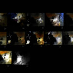 Josiane Keller - Starfish and Chiaki kissing - contact sheet