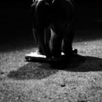 Josiane Keller - Elephant 16