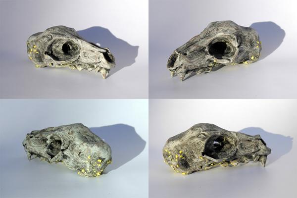 Josiane Keller - small skull - four times