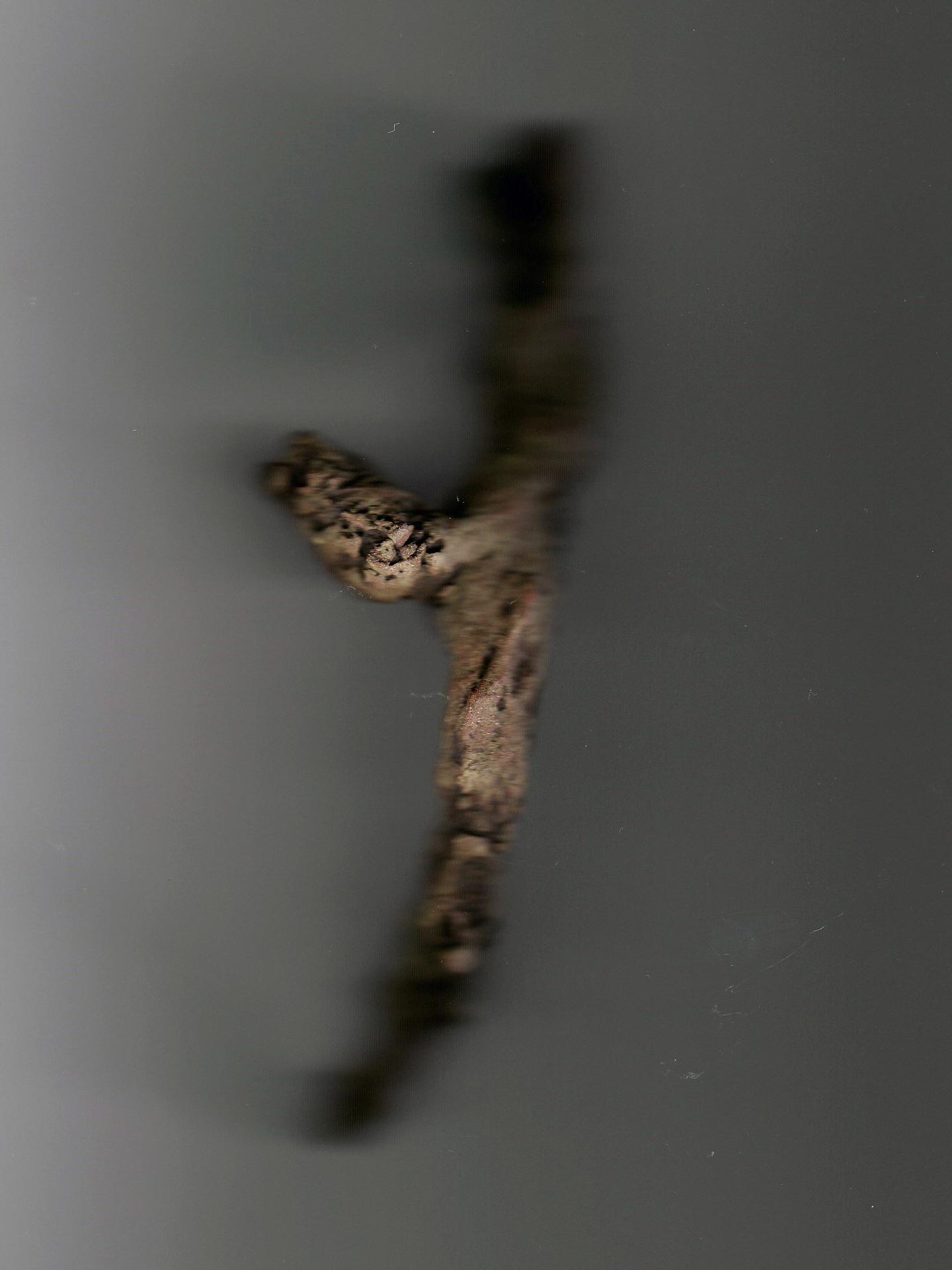 Josiane Keller - brown dry twig - photocopy 2